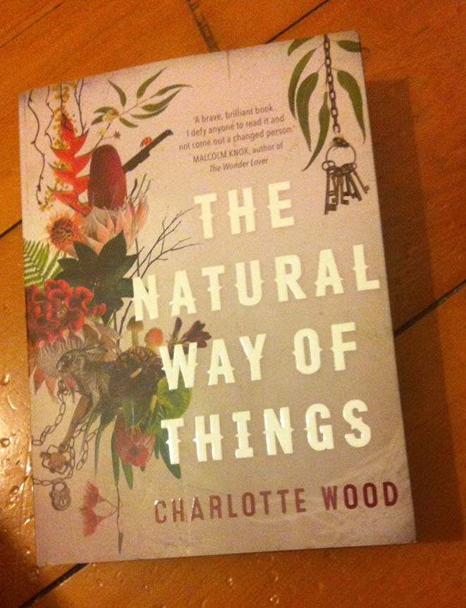 cover of the natural way of things